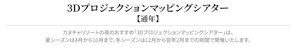 3Dマッピングシアターリード